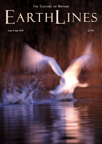 EarthLines Issue 9 cover